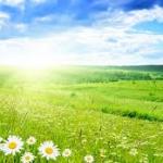 Da-Mir metoda_vraćanje prirodi i osnovama