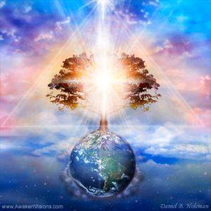 danielholeman-tree-of-light_500